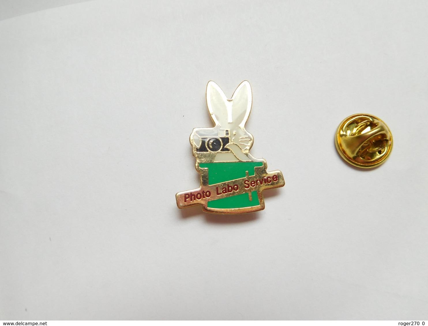 Beau Pin's , Photo , Photo Labo Service , Lapin , Rabbit - Fotografie