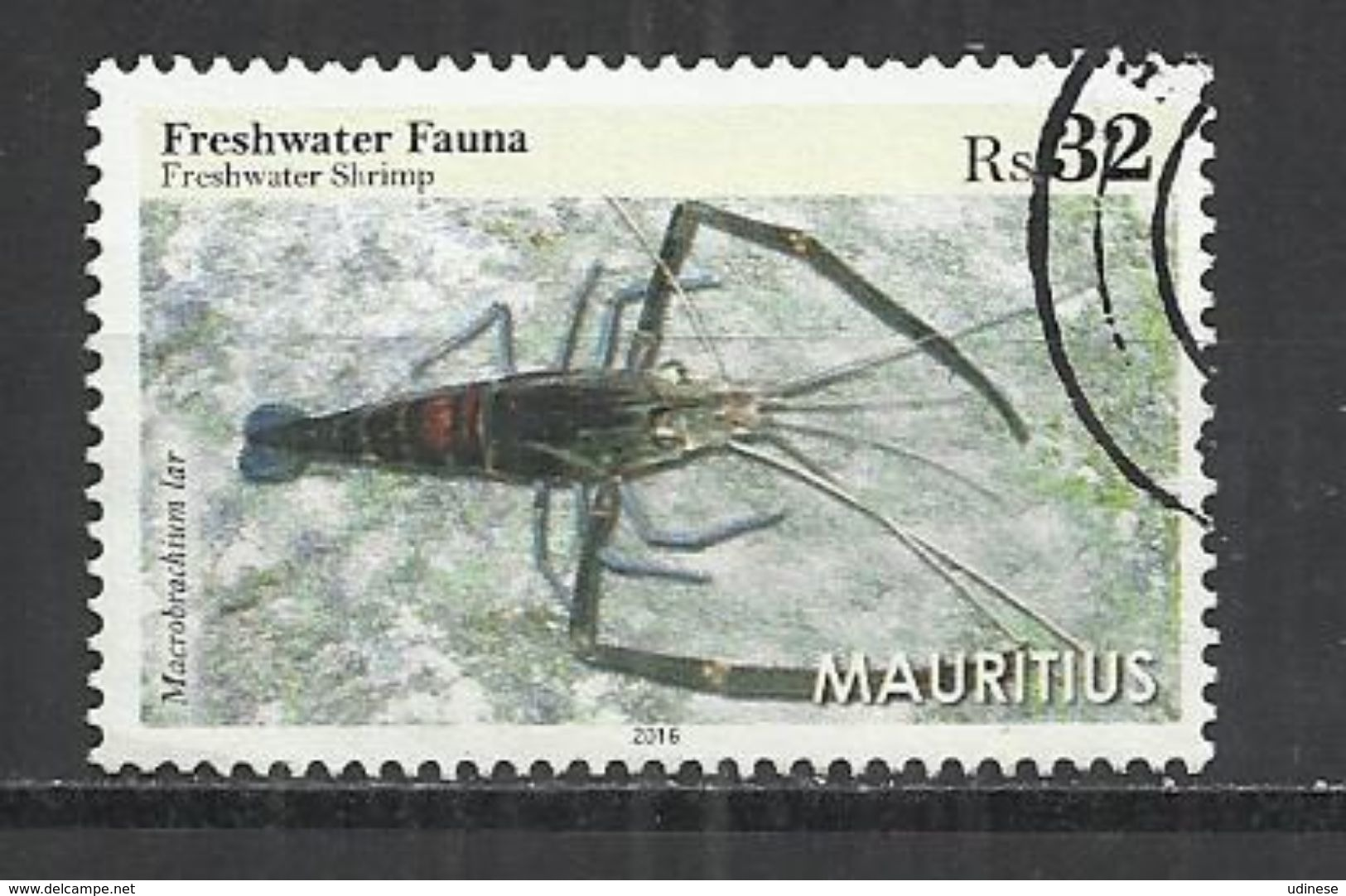 MAURITIUS 2016 - FRESHWATER SHRIMP (MACROBRACHIUM LAR) - USED OBLITERE GESTEMPELT USADO - Crustacés
