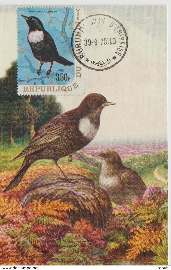 Carte Maximum 1970 Oiseaux Yv 406 - Burundi