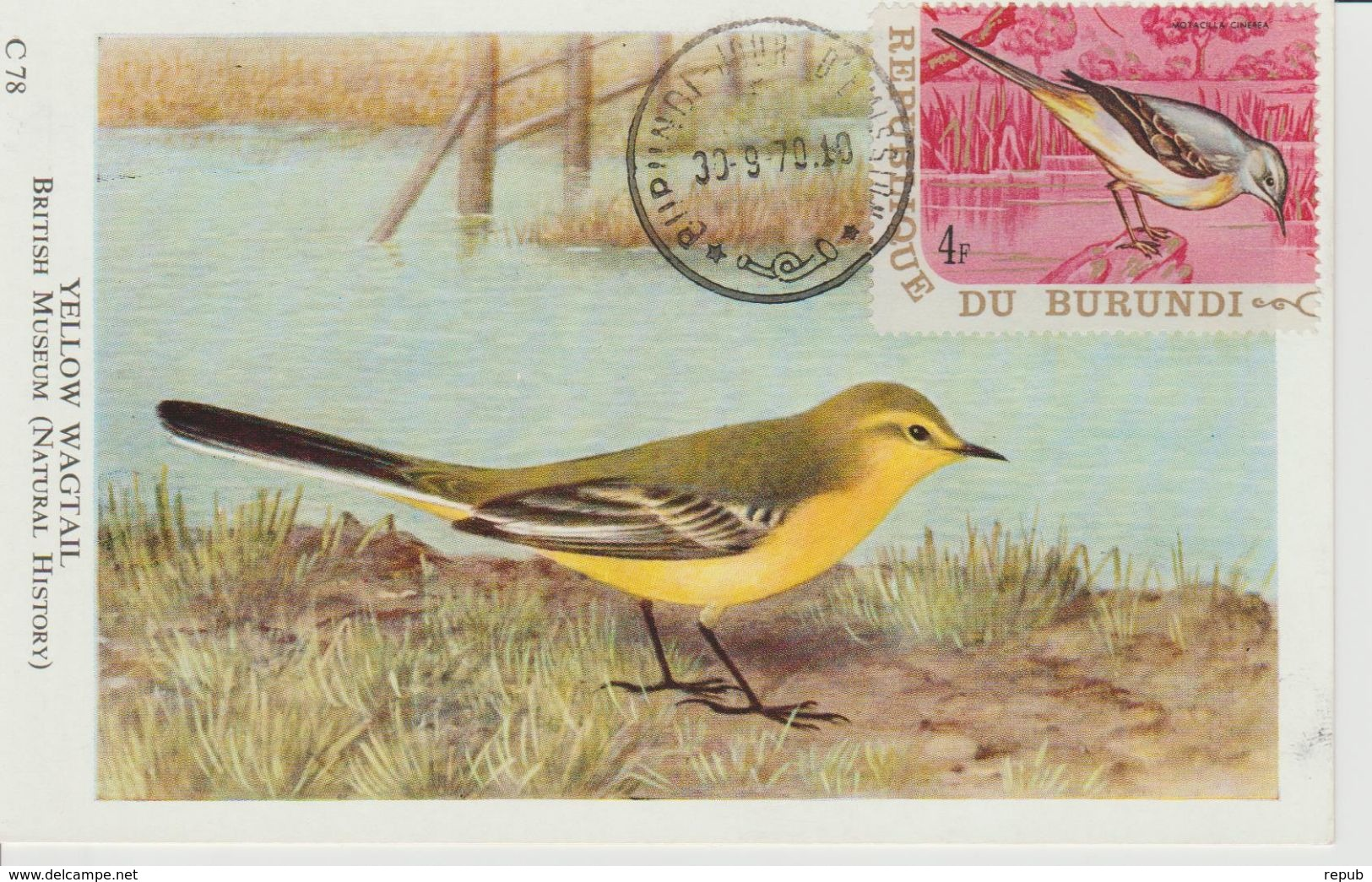 Carte Maximum 1970 Oiseaux Yv 409 - Autres