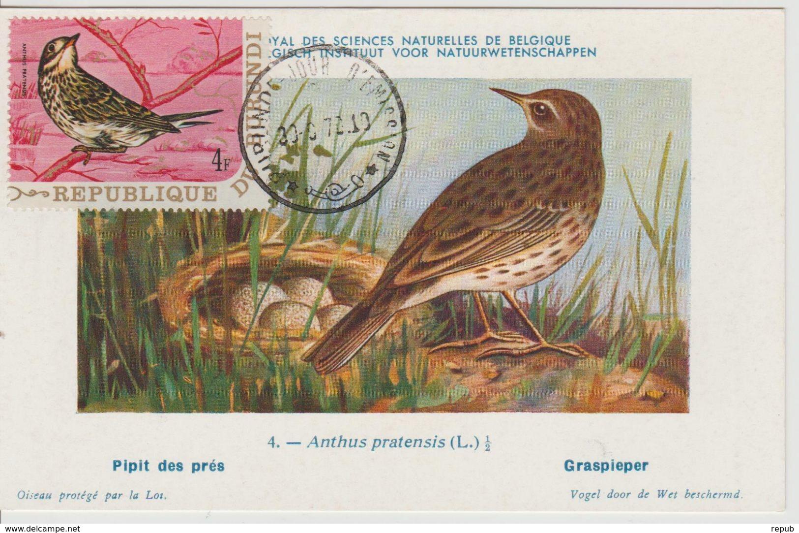 Carte Maximum 1970 Oiseaux Yv 410 - Autres
