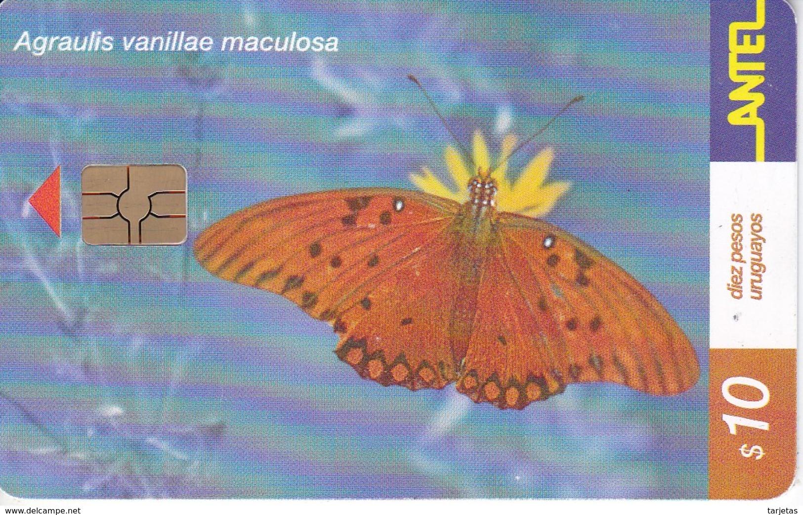 Nº 183 TARJETA DE URUGUAY DE ANTEL DE UNA AGRAULIS VANILLAE (MARIPOSA-BUTTERFLY) CHIP ROJO - Uruguay
