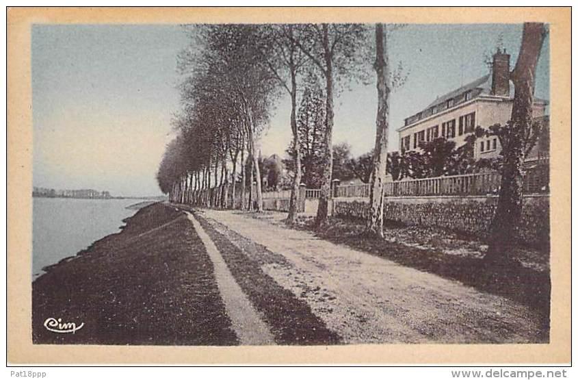 41 - SAINT DYE SUR LOIRE : Bord De La Loire - CPA Colorisée - Loir Et C Her - France