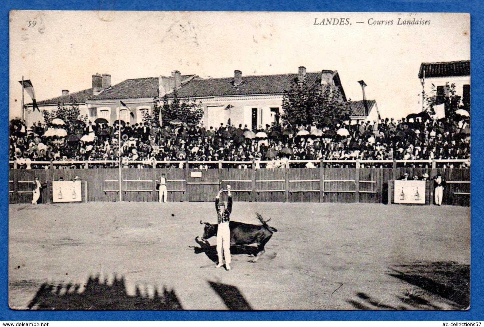 Landes / Courses Landaises - France