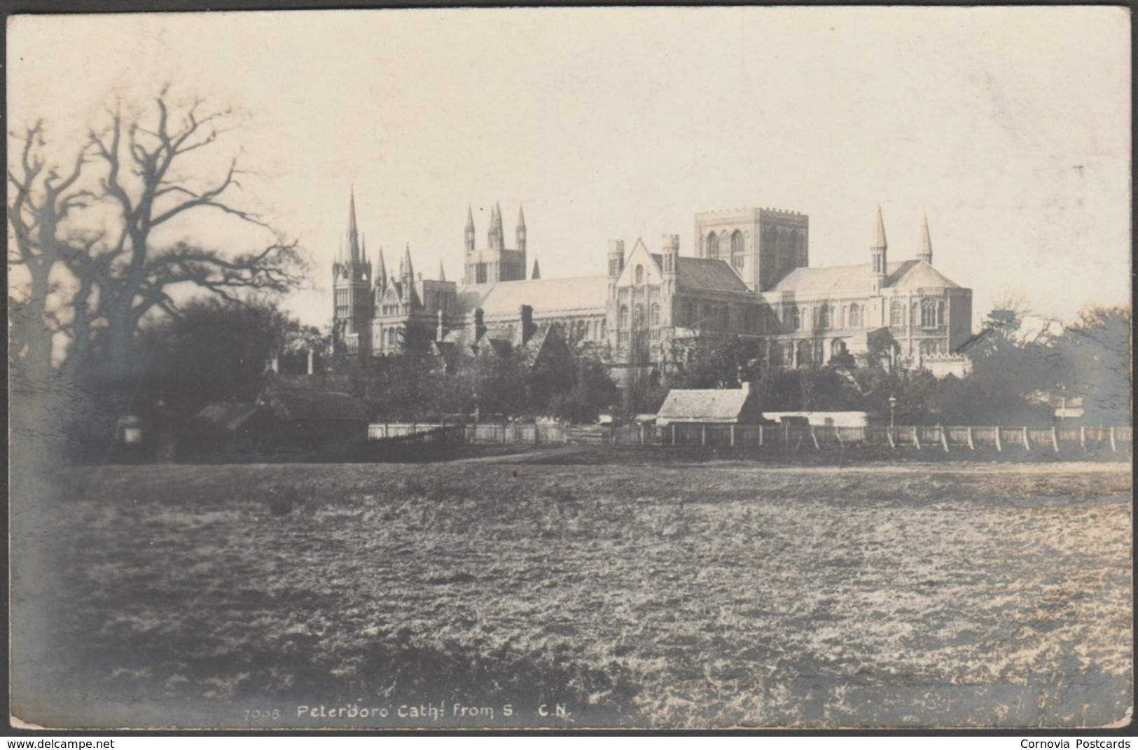 Peterborough Cathedral From The South, Northamptonshire, C.1910s - Photochrom RP Postcard - Northamptonshire