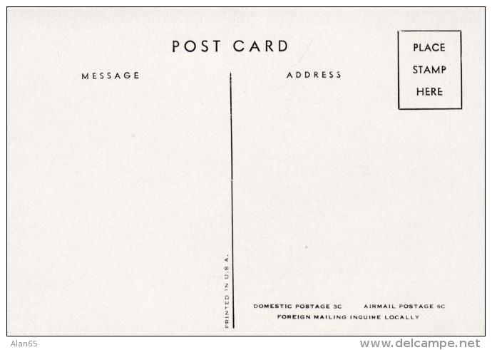 American Airlines Folding Menu, C1940s Vintage Postcard - 1946-....: Era Moderna