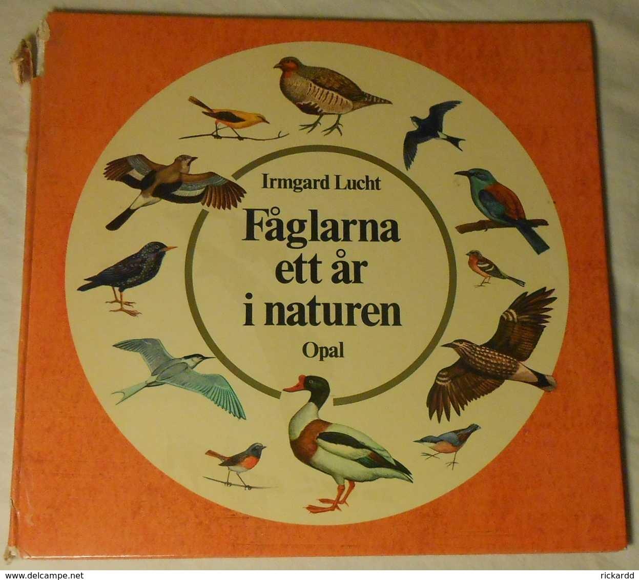 Fåglarna Ett år I Naturen Av Irmgard Lucht - Scandinavian Languages