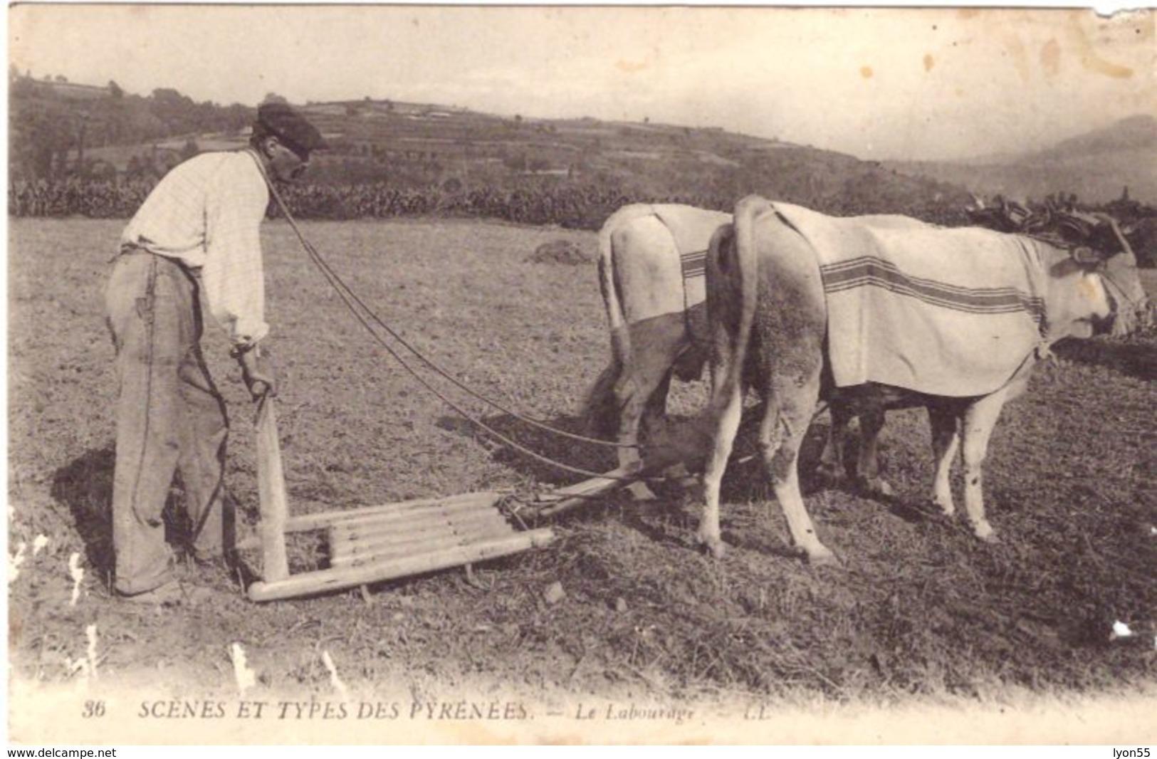 Scénes Et Types Des Pyrénées Le Labourage - Cultures