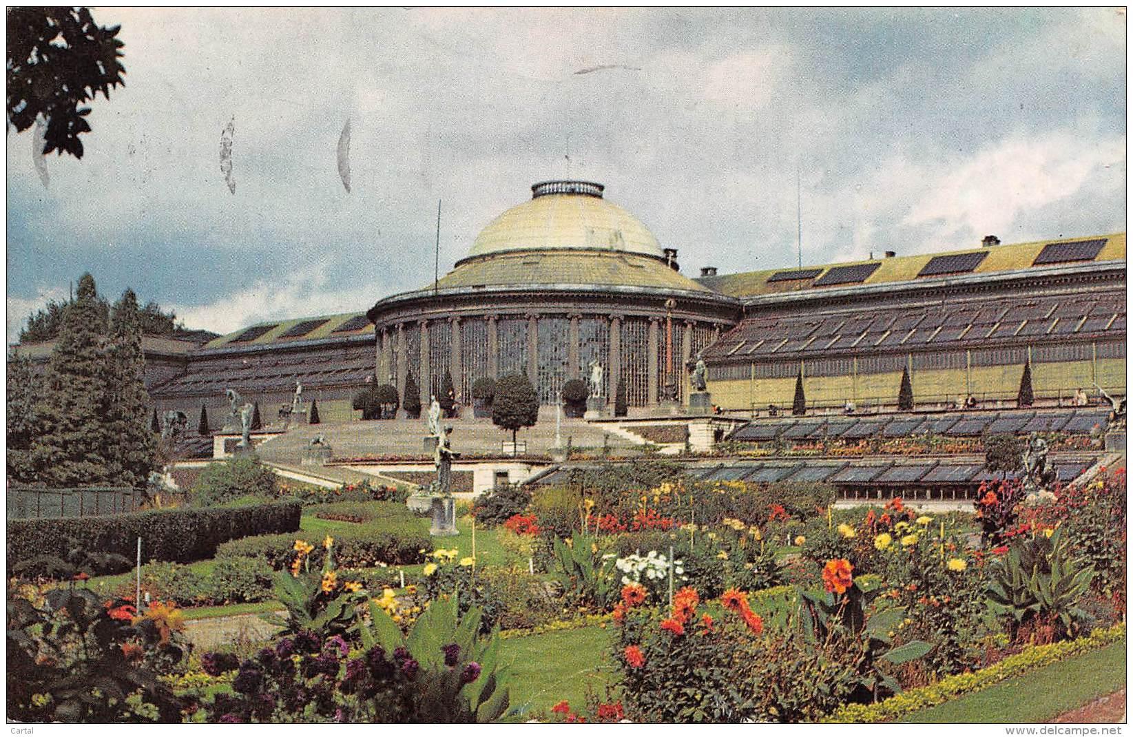BRUXELLES - Le Jardin Botanique - Bossen, Parken, Tuinen