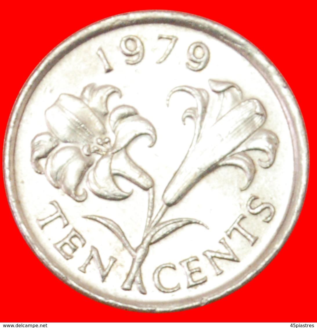 # FLOWER (1970-1985): BERMUDA ★ 10 CENTS 1979! LOW START ★ NO RESERVE! - Bermudes