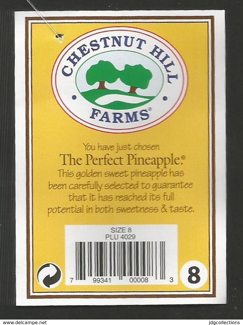 # PINEAPPLE CHESTNUT HILL FARMS Type 2 Size 8 BAR CODE Fruit Tag Balise Etiqueta Anhanger Costa Rica Ananas Pina - Fruits & Vegetables