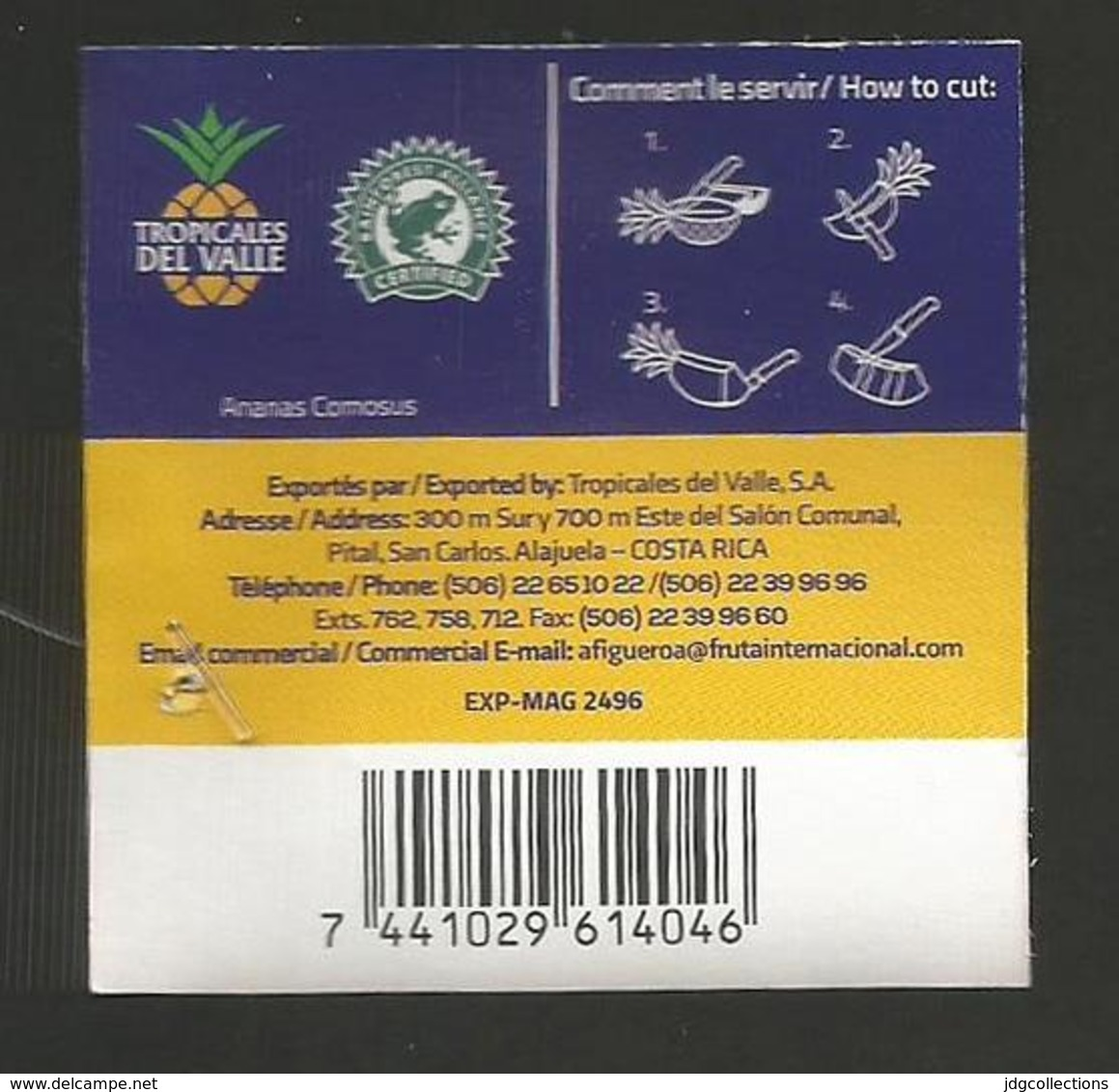 # PINEAPPLE TROPICAL SWEET Type 2 No-Size Fruit Tag Balise Etiqueta Anhanger Ananas Pina Costa Rica - Fruits & Vegetables