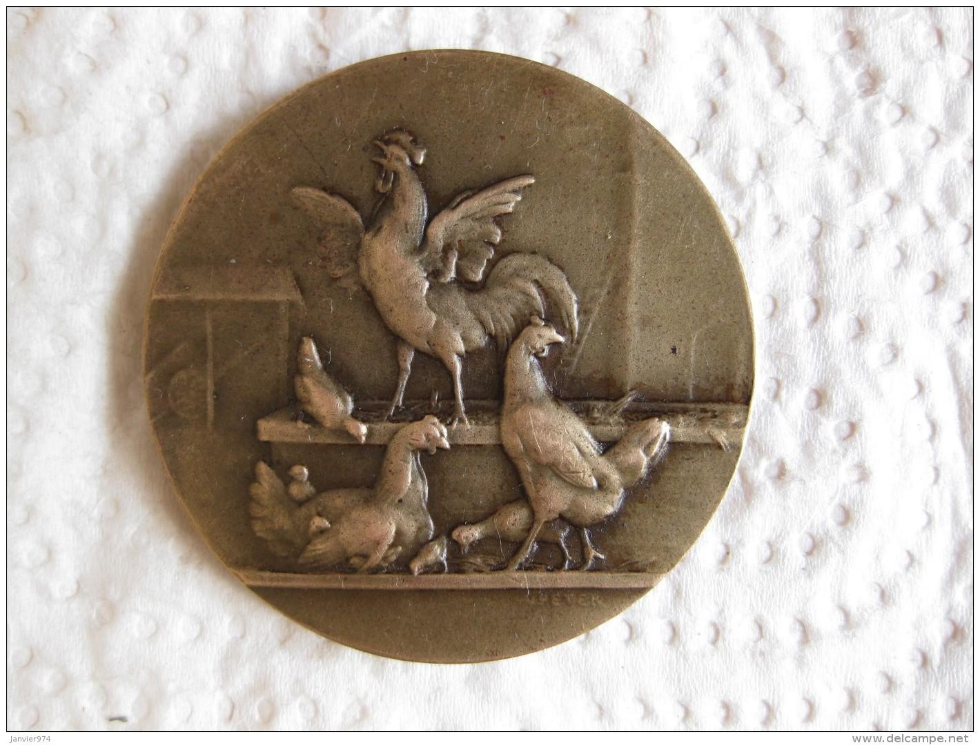 Medaille Société Des Aviculteurs De La Gironde , Par Peter - Ohne Zuordnung