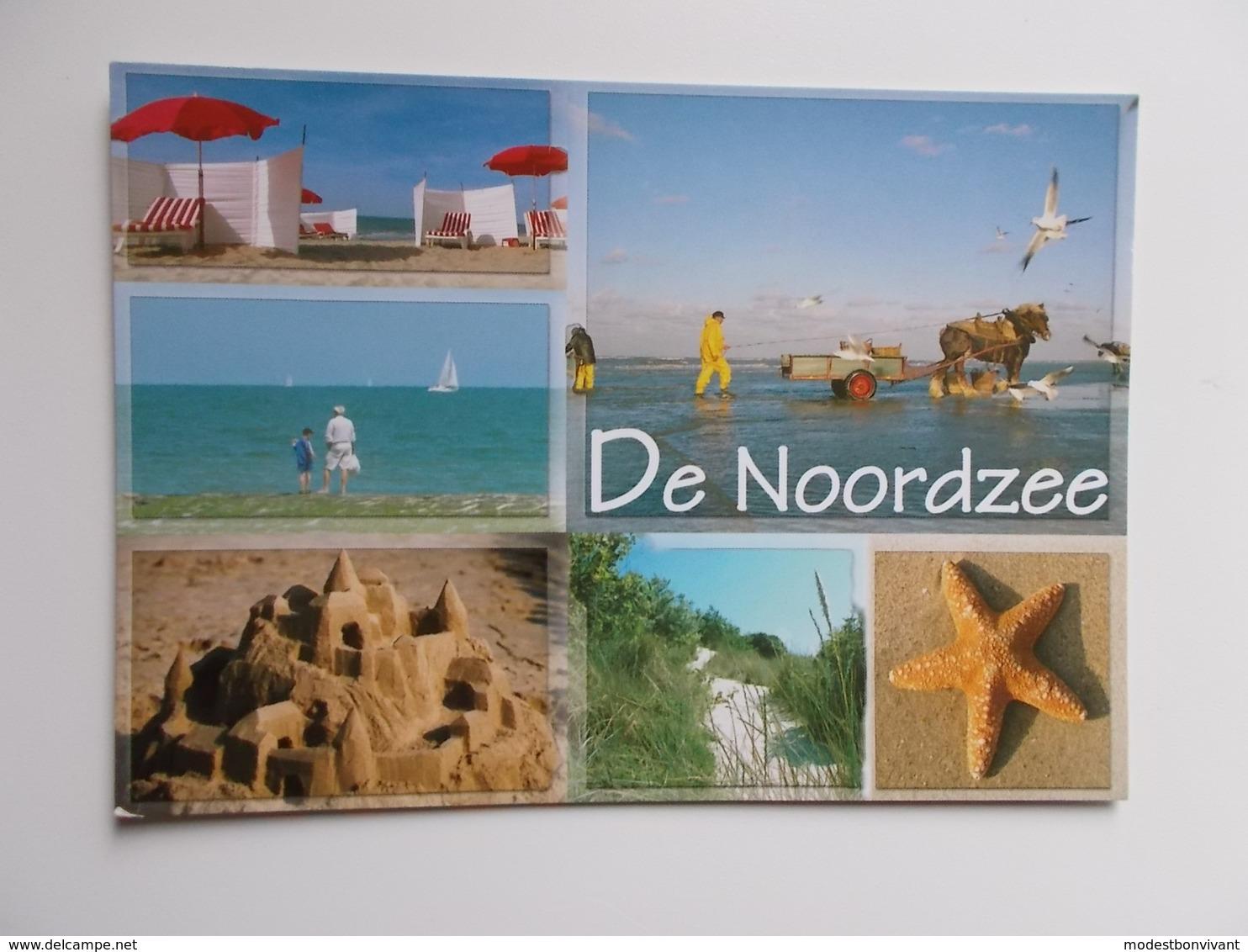 DE NOORDZEE - KUST -  , Groeten Uit .......... Un Bonjour De ........ - Belgique