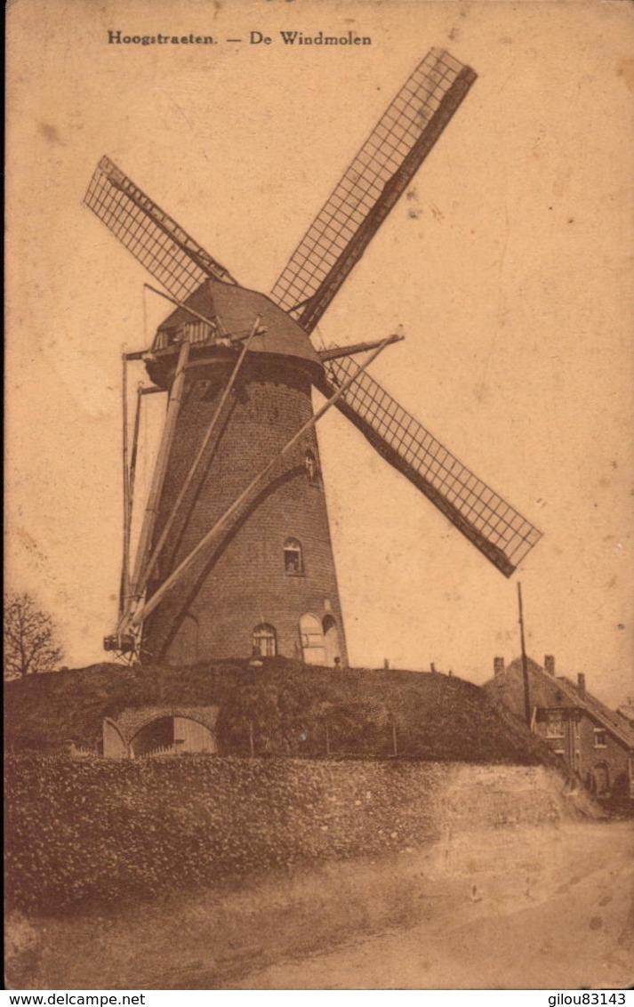 Belgique, Hoogstraten, De Windmolen       (bon Etat) - Hoogstraten