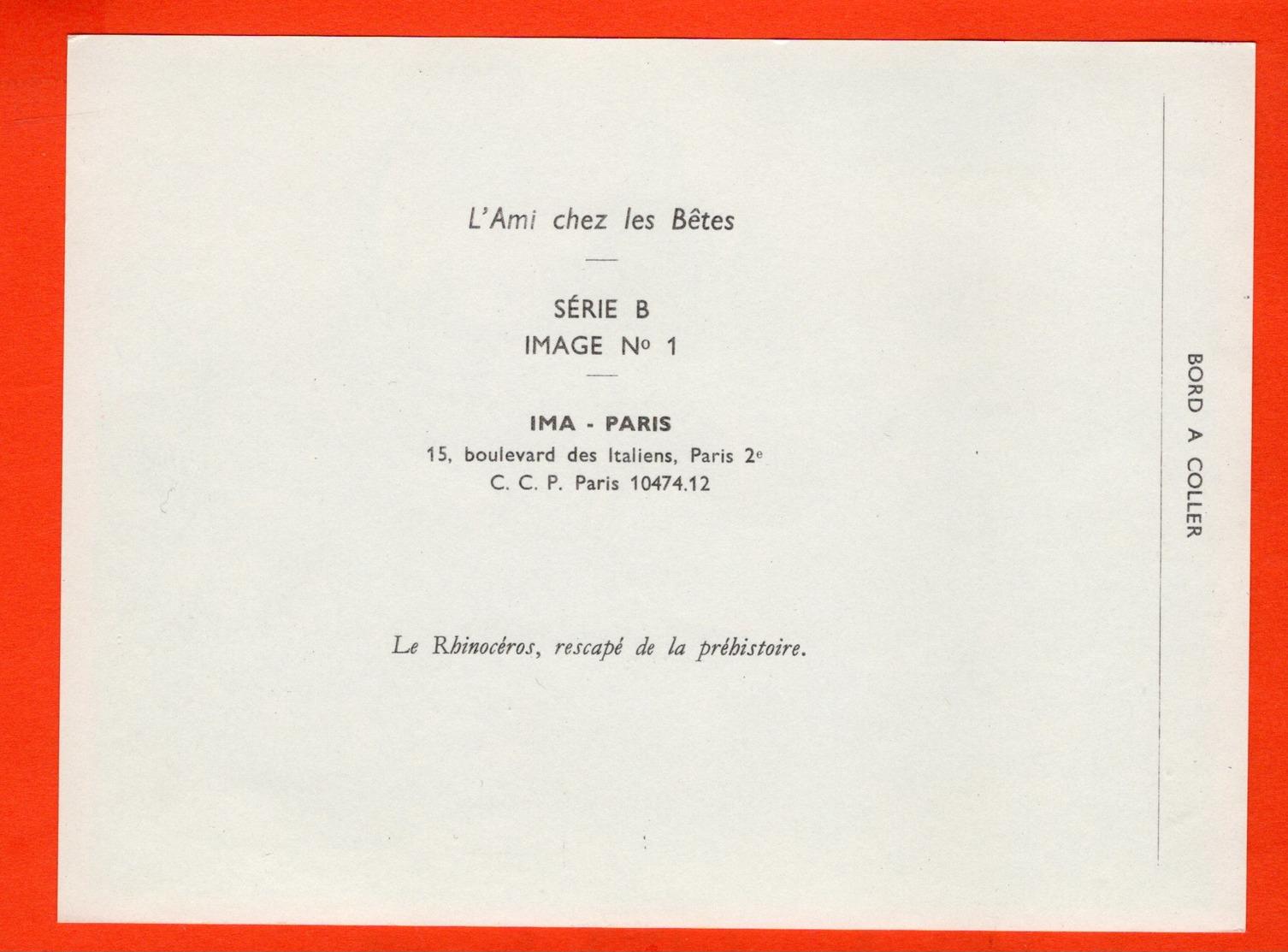 GRANDE IMAGE POUR ALBUM (12 X 16 Cm)  - L'AMI CHEZ LES BÊTES - IMA - LE RHINOCÉROS - Documentos Antiguos