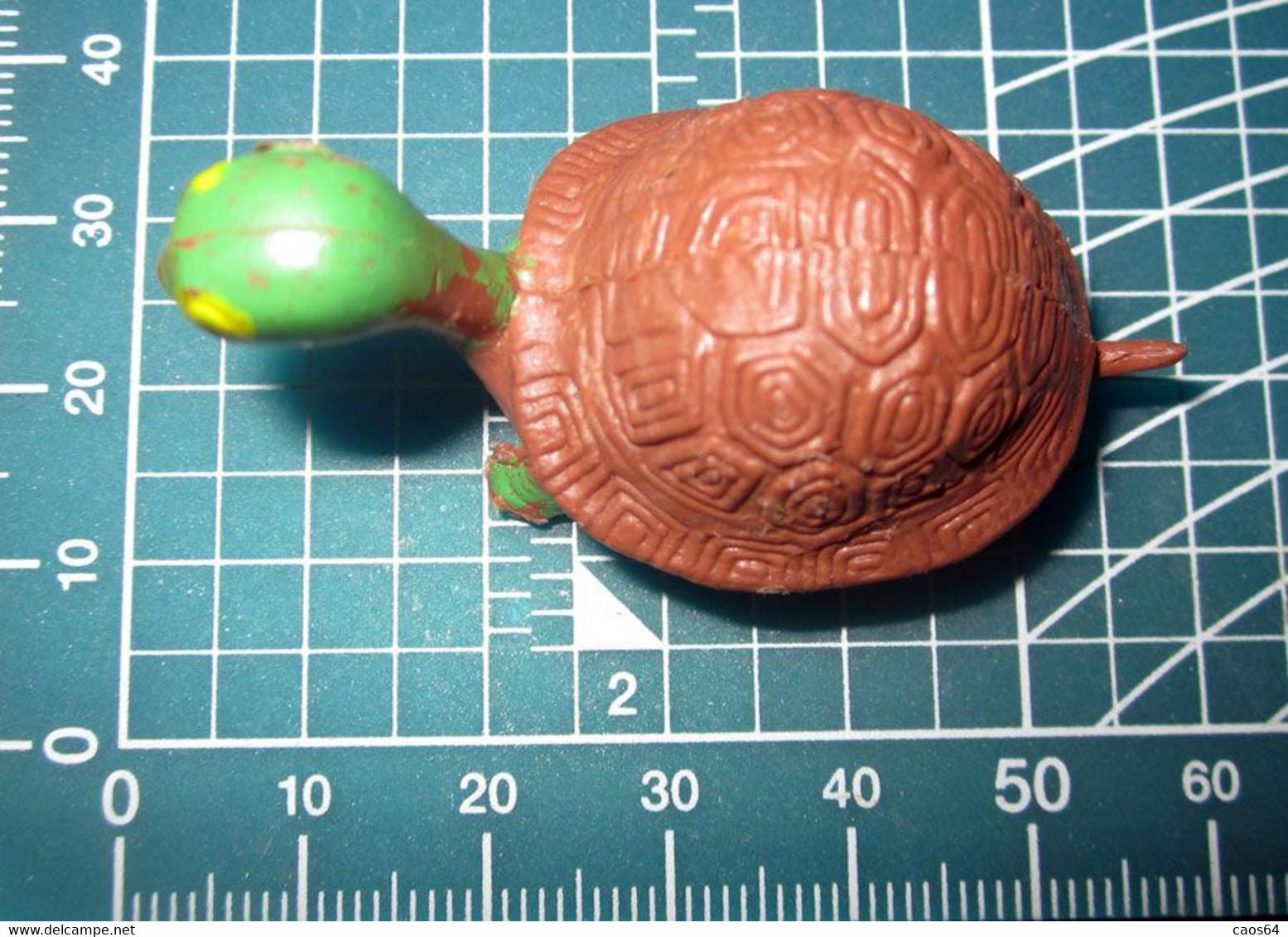 TARTARUGA HONG KONG 913 - Turtles