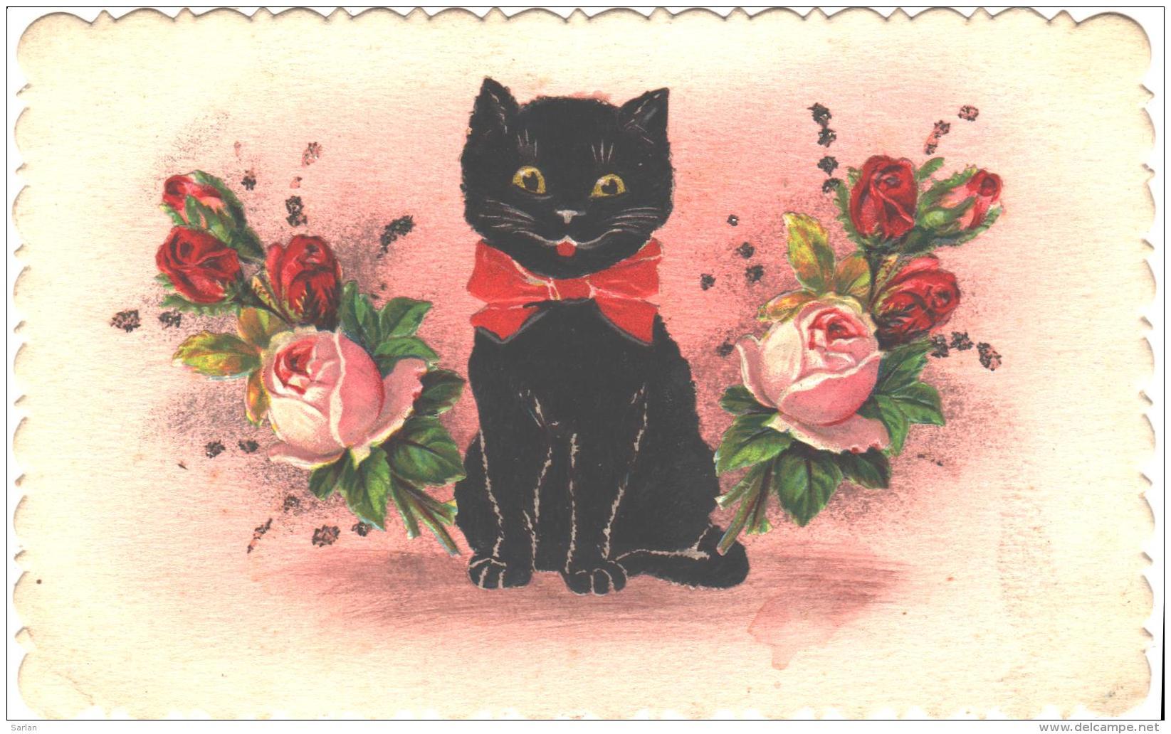 Chat Noir , Chromo Collé , * 262 34 - Chats