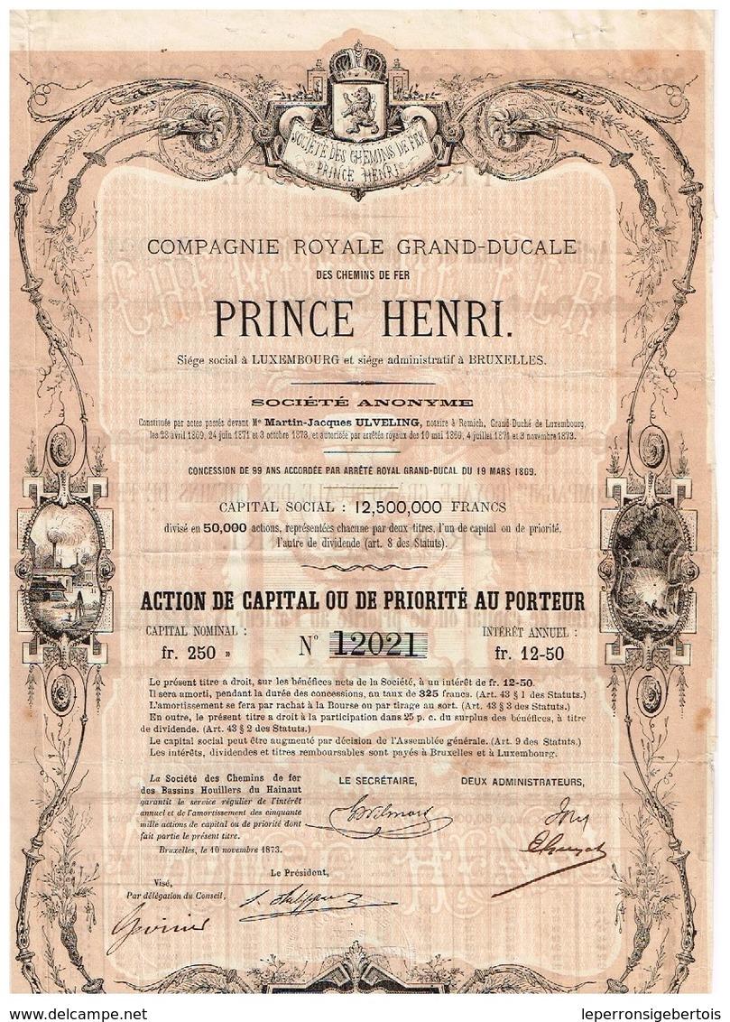 Action Ancienne - Compagnie Royale Grand-Ducale Des Chemins De Fer Prince Henri - Titre De 1873 - F/-VF - Déco - Spoorwegen En Trams
