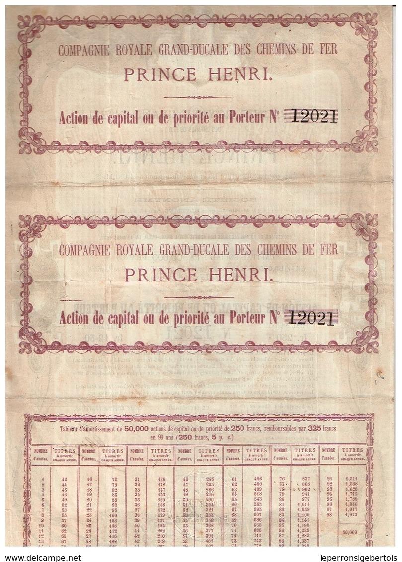 Action Ancienne - Compagnie Royale Grand-Ducale Des Chemins De Fer Prince Henri - Titre De 1873 - F/-VF - Déco - Chemin De Fer & Tramway