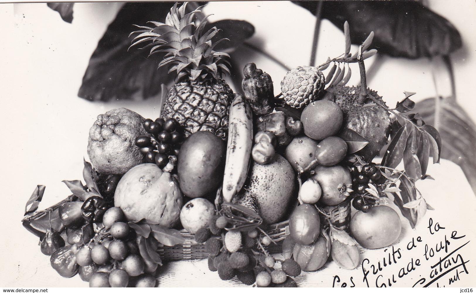CPA Les Fruits De La Guadeloupe Signée CATAN - Guadeloupe