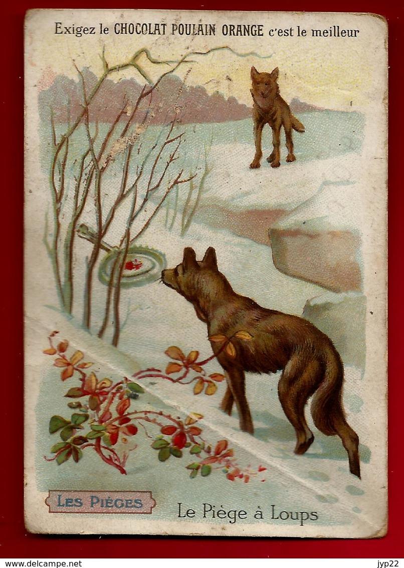 Chromo Chocolat Poulain Le Piège à Loups - Animal Loup - Poulain