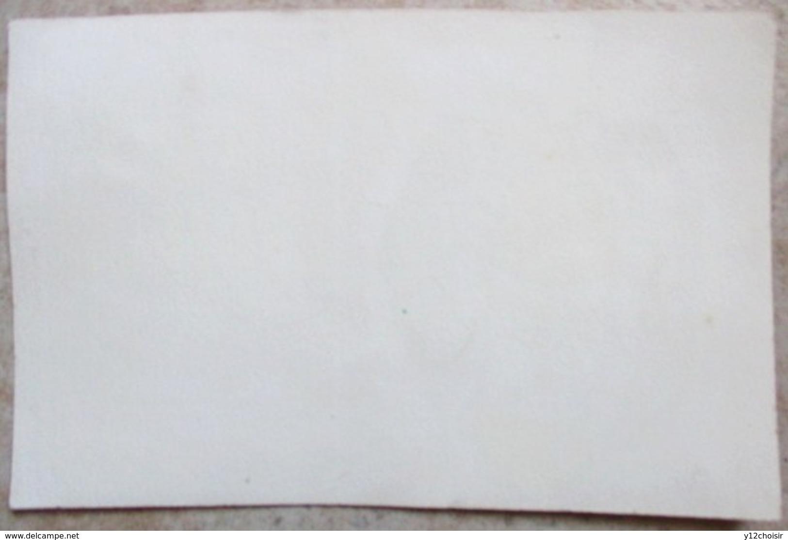 ANCIEN BUVARD HUILE LESIEUR ARACHIDE - Buvards, Protège-cahiers Illustrés
