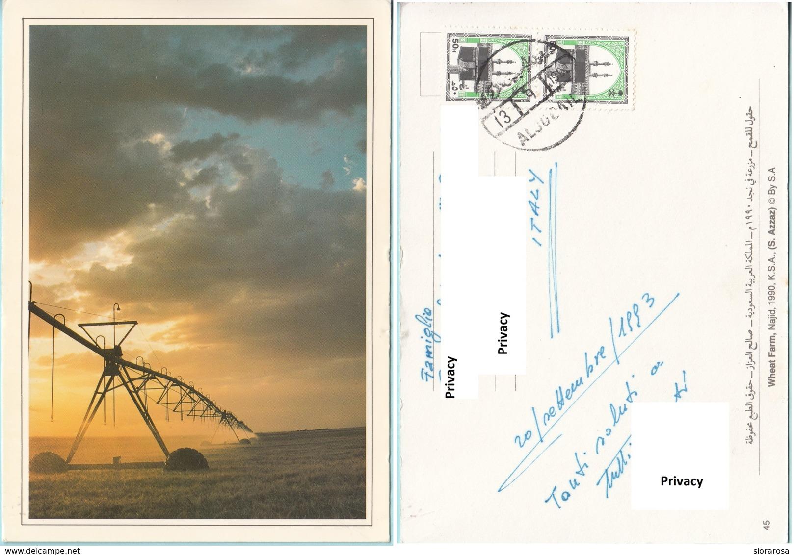 Arabia Saudita - Wheat Farm, Najid 1990, K.S.A. - Arabia Saudita