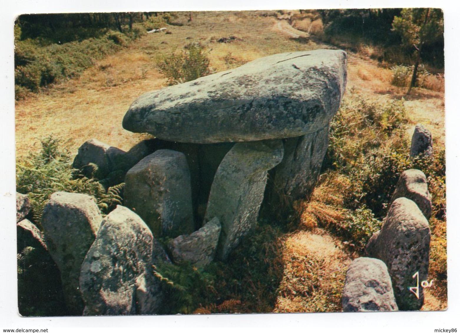Près  Auray Et Plouharnel - Mégalithes De Bretagne - Le Dolmen De Keravial (préhistoire) - Dolmen & Menhirs