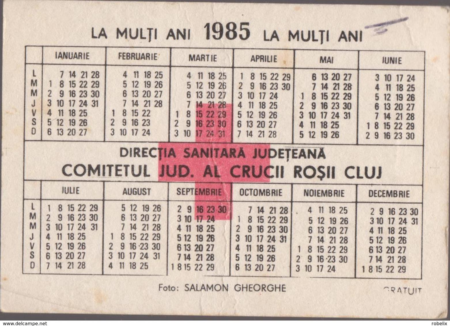 CALENDARS - ROMANIA 1985  4 Calendars -Red Cross - Croix Rouge -Rotes Kreuz  - FLOWERS  (7 X 10 Cm) -5 Scans - Calendars