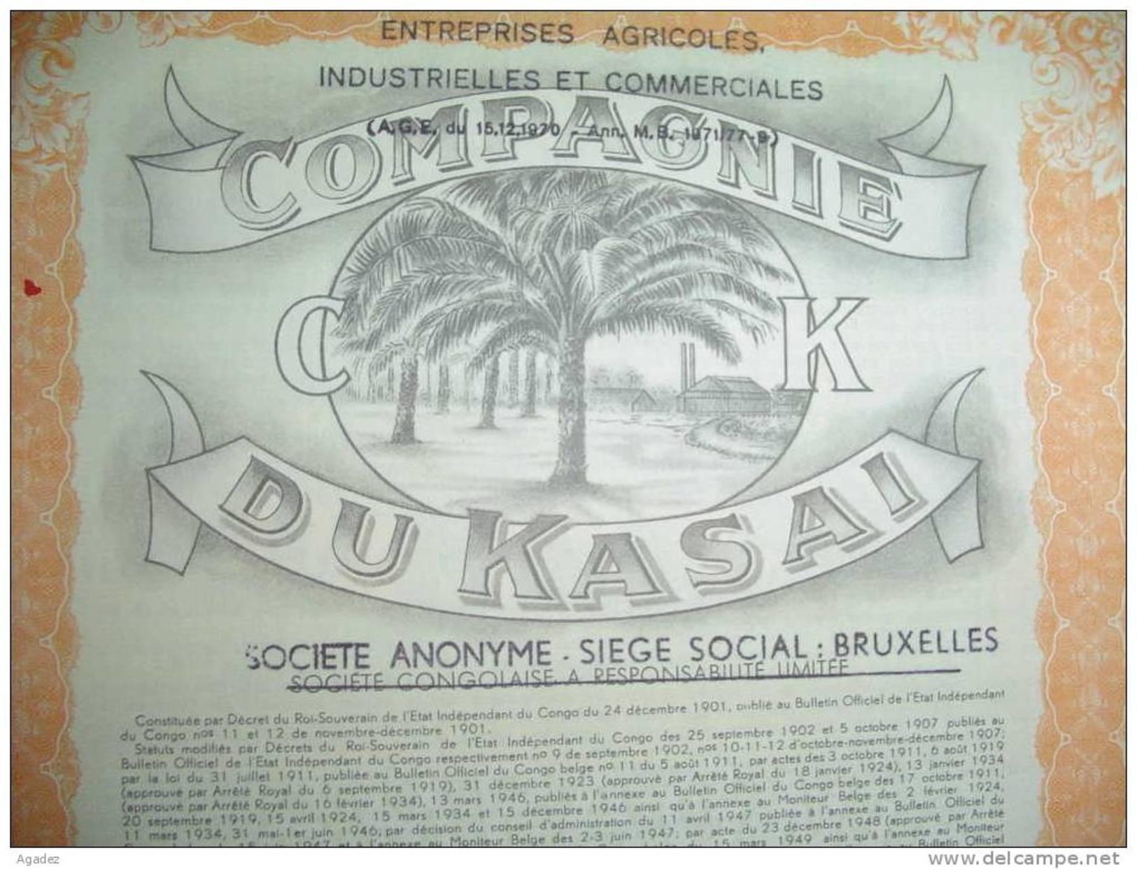 """Action""""Compagnie Du Kasai""""(agriculture,industrie)Dima(Banningville,congo Belge)1955 - Afrique"""