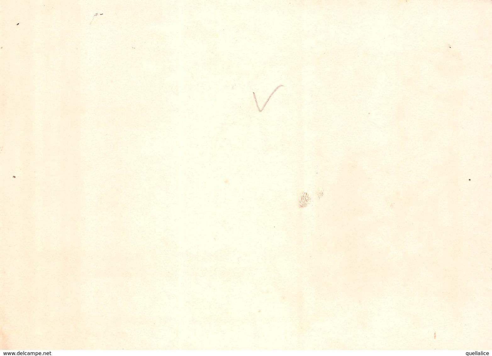 "0358 ""TORINO - GIUSEPPE PIA - MACELLERIE DI 1° CLASSE - CASA ESPORTATRICE DI CARNI FRESCHE"" PUBBL. ORIG. LIBERTY - Autres"