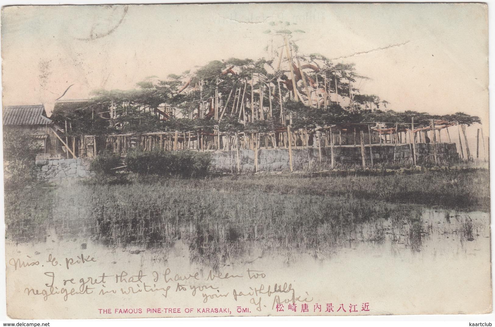 The Famous Pine Tree Of Karasaki, Omi - (Japan) - Undivided Postcard, 1906 - Tokyo To London - Andere