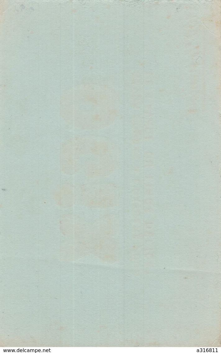 BUVARD  OGIX - Buvards, Protège-cahiers Illustrés