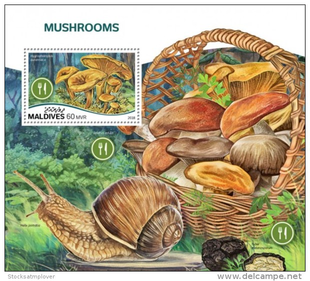Maldives 2018  Mushrooms  S201808 - Maldives (1965-...)