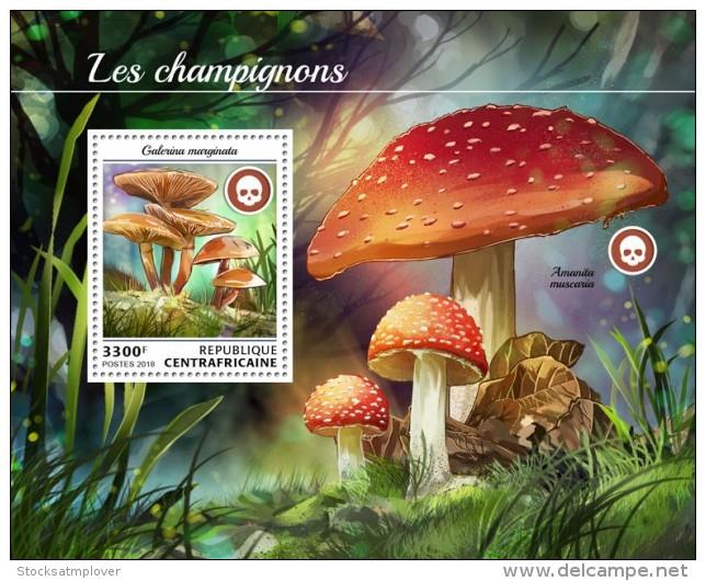 Central Africa 2018 Mushrooms  S201808 - Centrafricaine (République)