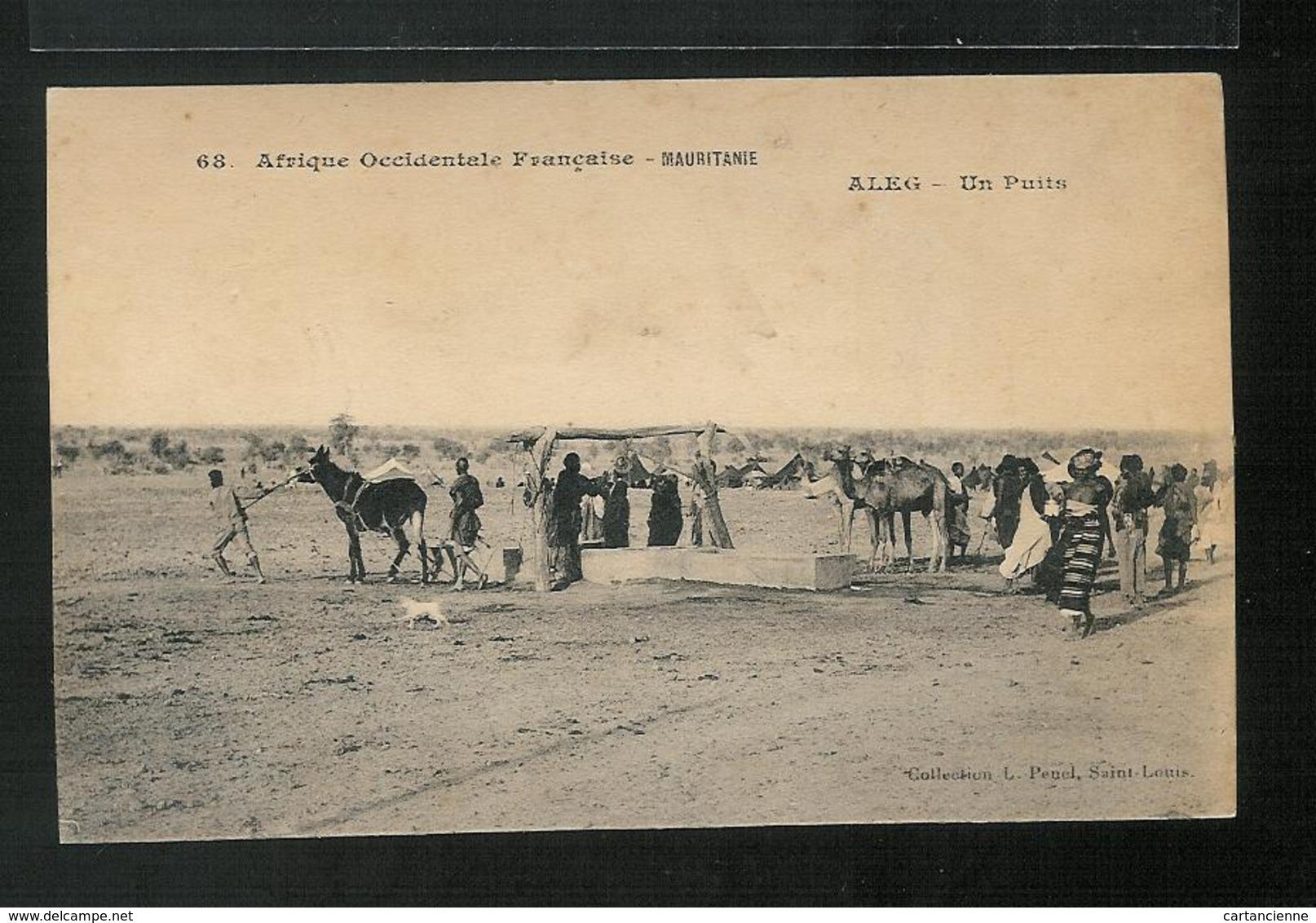 MAURITANIE - Mauritania - ALEG - Un Puits - Mauritania
