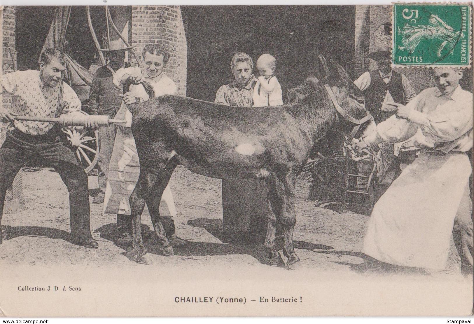 CHAILLEY - EN BATTERIE - AVEC UN ÂNE - Burros