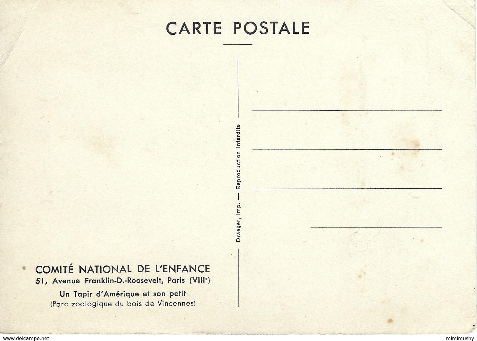 Animaux - Comité National De L'enfance - Un Tapir D'amérique Et Son Petit - Parc Zoo De Vincennes - Animaux & Faune