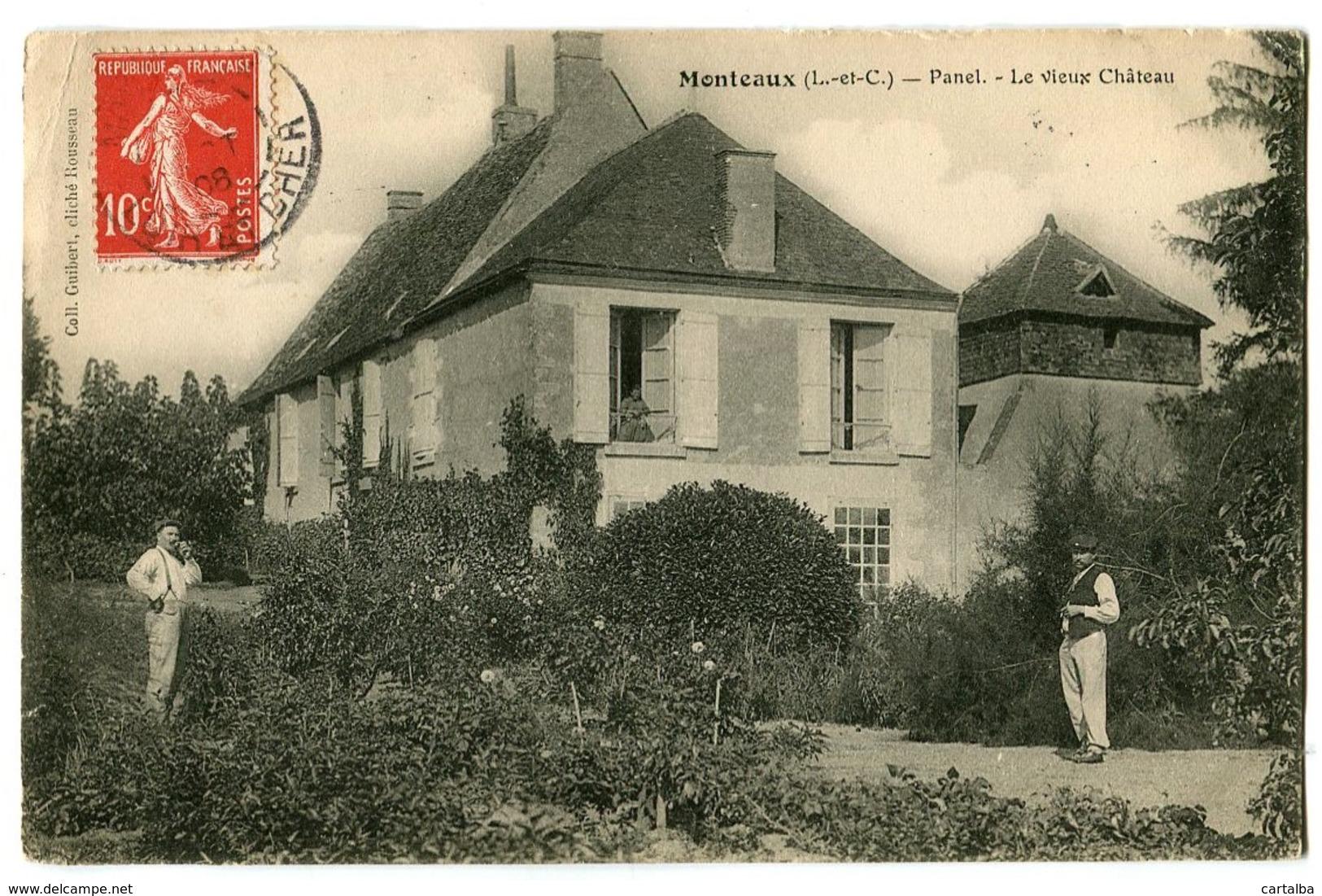 CPA 41 Loir Et Cher Monteaux Panel Le Vieux Château Animé - Otros Municipios