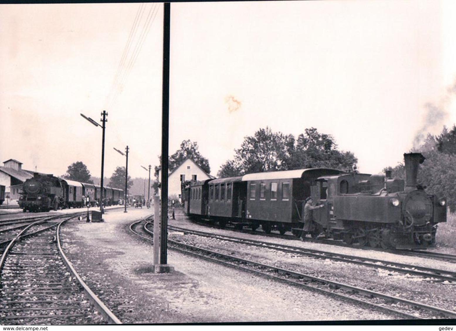 Österreichische Bundesbahnen, Völkermarkt-Kühnsdorf Bahnhof, Train à Vapeur, Photo 1964, BVA ÖBB 514.1 - Eisenbahnen
