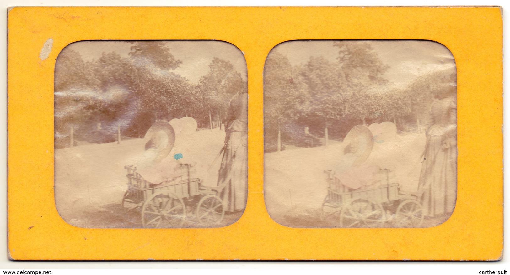 Lot De 4 Photos Stéréo - Effet Coloré Par Transparence - Scènes De Famille , Enfants , Attelage , Repas Champêtre... - Photos Stéréoscopiques