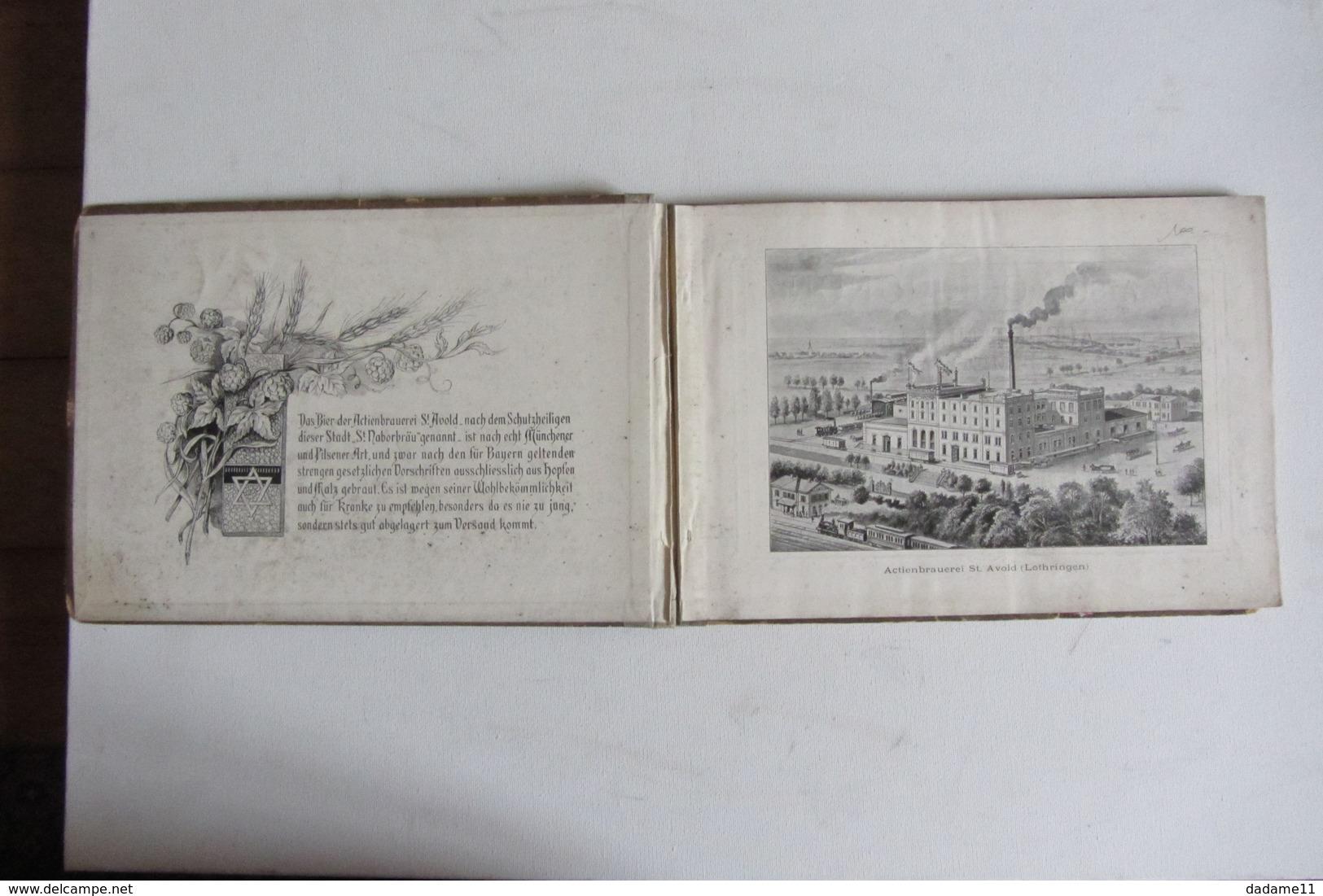 Album  Sur L'Alsace Lorraine  Vers 1900 - Livres Anciens
