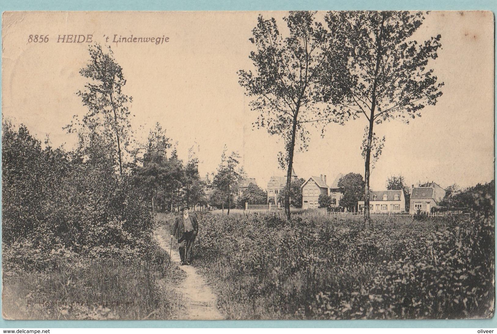 Heide : 't Lindenwegje - Kalmthout