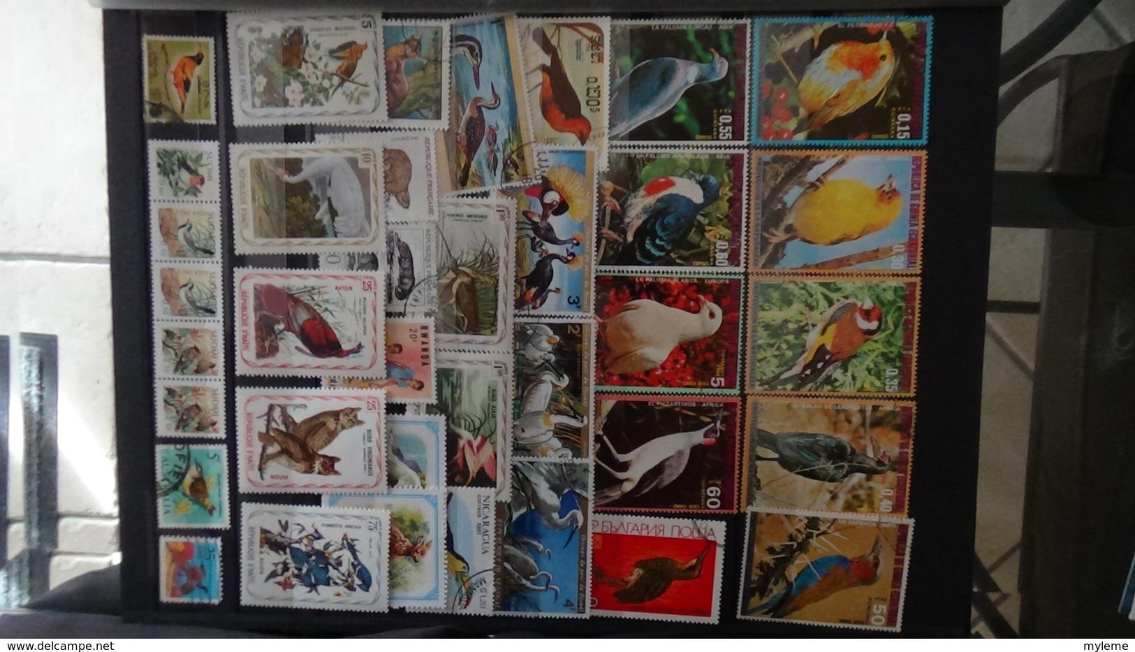 Belle Thématiques Sur Les Oiseaux Et Autres Animaux !!! - Timbres