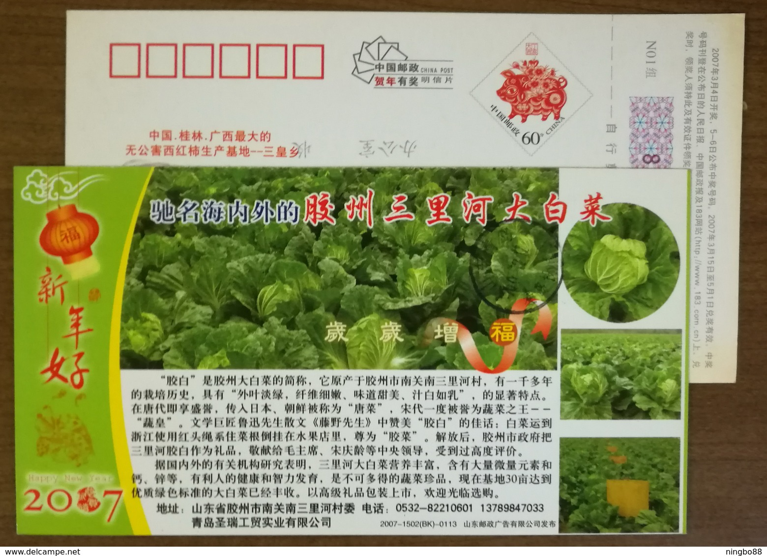 Vegetable Planting Base,China 2007 Jiaozhou Chinese Cabbage Advertising Pre-stamped Card - Vegetables