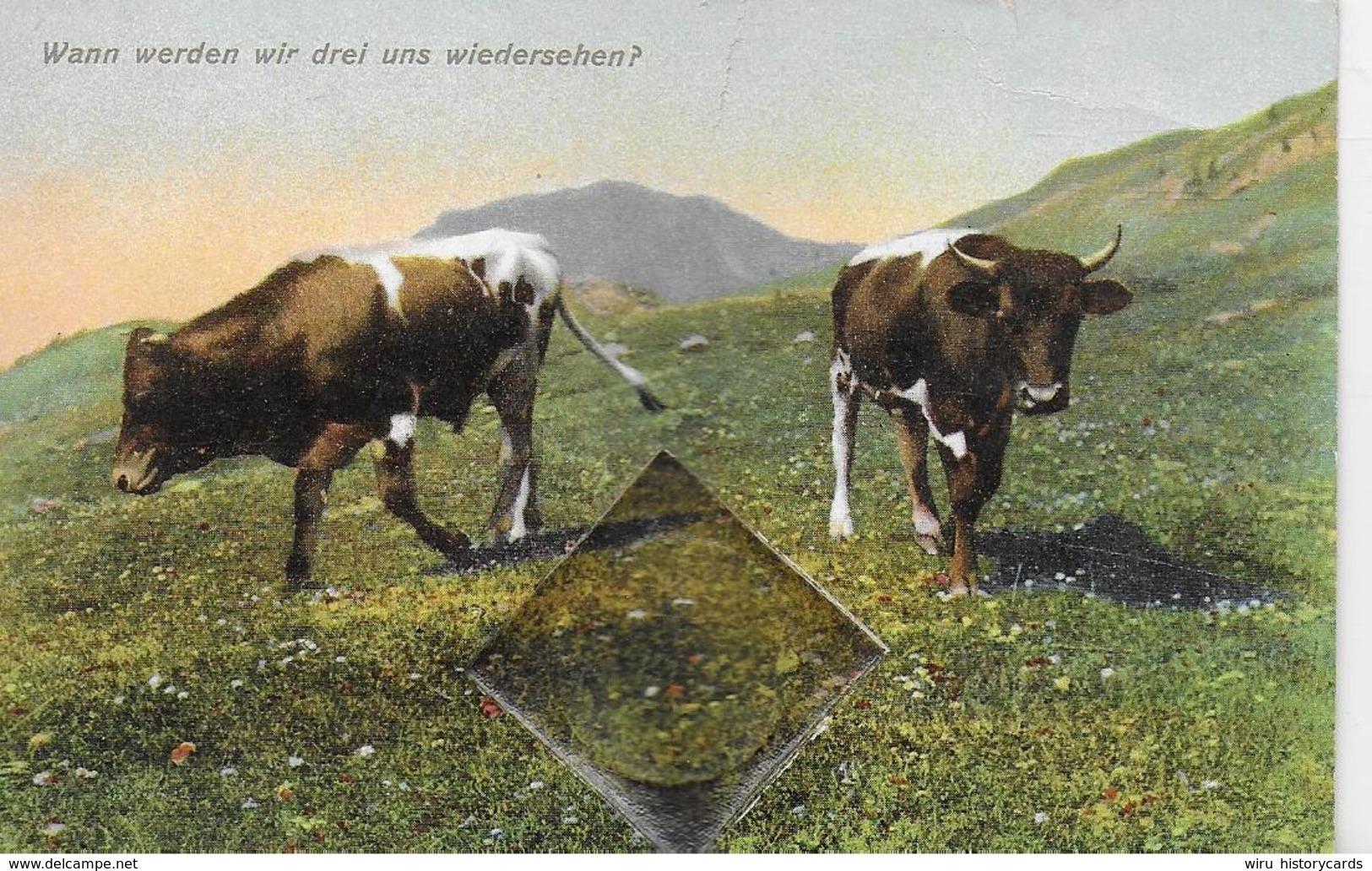 AK 0050  Kühe Auf Der Weide - Wann Werden Wir Drei Uns Wiedersehen ? / Verlag Zieher Um 1910-20 - Kühe