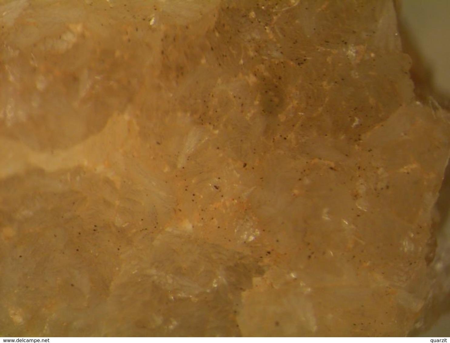 * FAIRFIELDITE Xls, Foote Mine, Kings Mts., North-Carolina, USA * - Minéraux