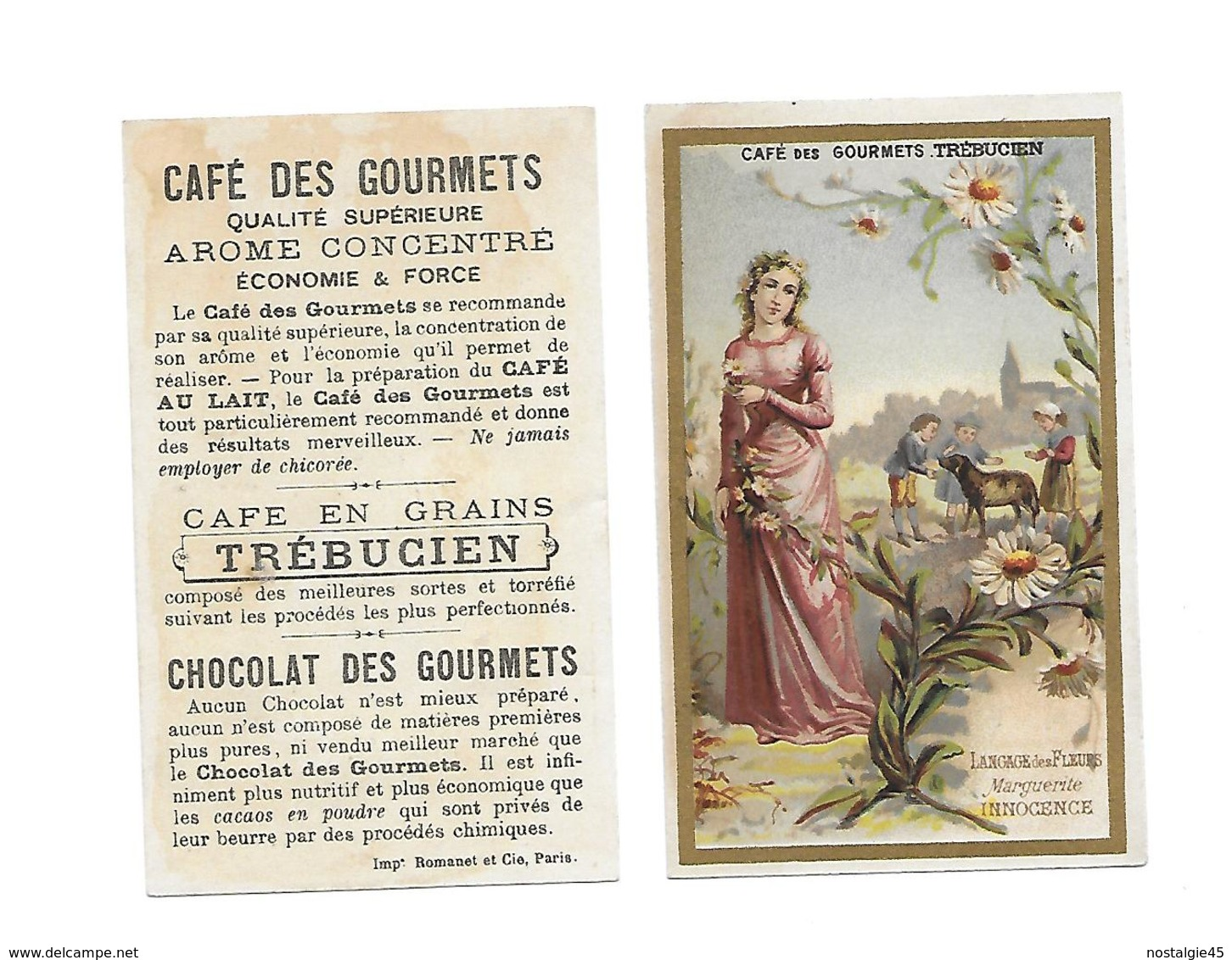 Chromo Romanet & Cie/Trébucien/Langage Des Fleurs : Marguerite - Innocence - Thé & Café