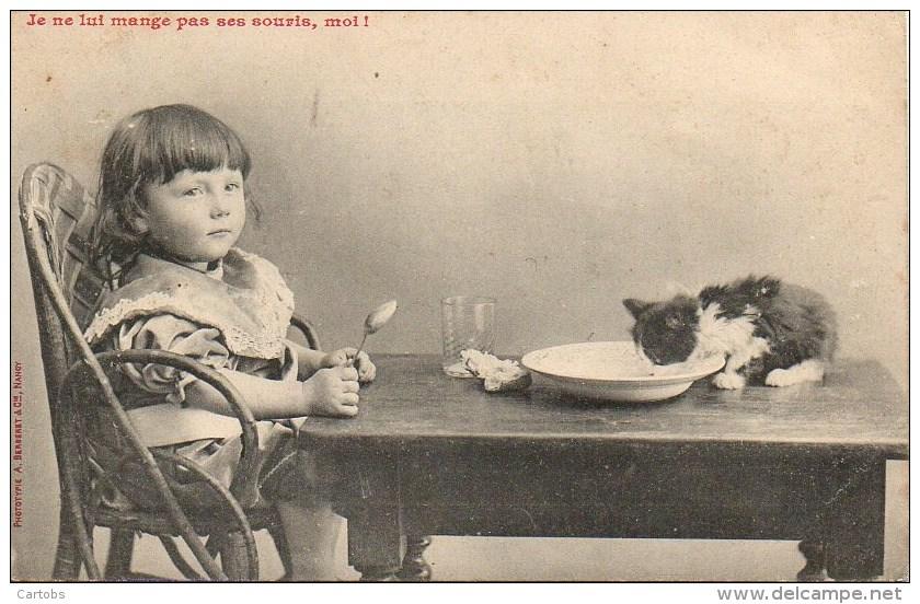 CHAT  Je Ne Lui Mange Pas Ses Souris , Moi - Katten